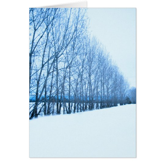 Wall of Trees Card