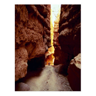 Wall Street, Bryce National Park, Utah rock format Postcard