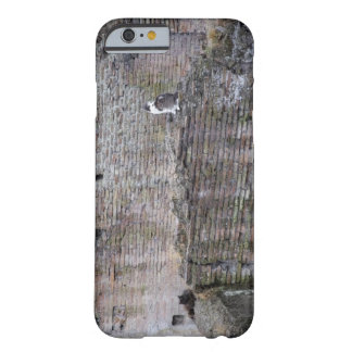 Wall with cats sitting on it barely there iPhone 6 case