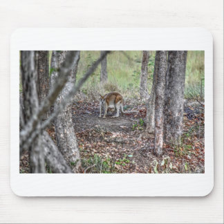 WALLABY AND JOEY QUEENSLAND AUSTRALIA ART EFFECTS MOUSE PAD