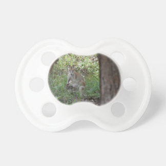 WALLABY AND JOEY RURAL QUEENSLAND AUSTRALIA PACIFIER