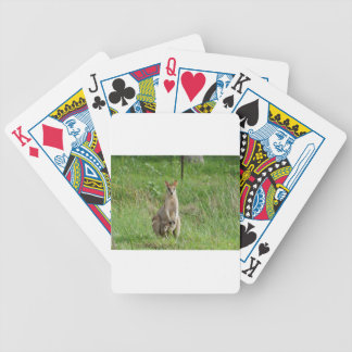 WALLABY AND JOEY RURAL QUEENSLAND AUSTRALIA POKER CARDS