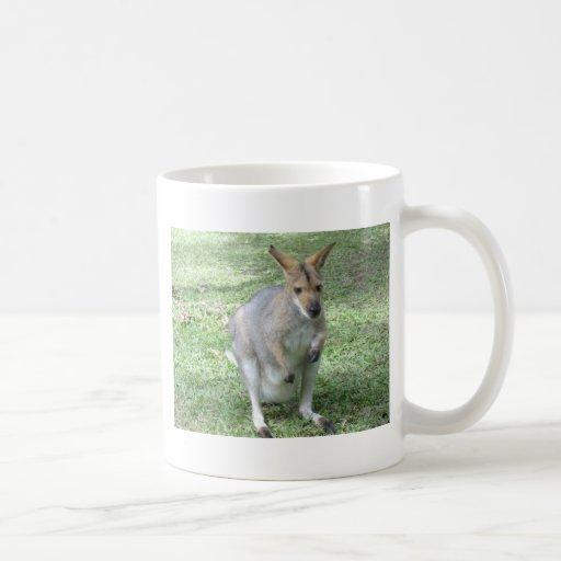 Wallaby australiano taza de café