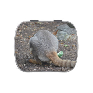 wallaby back view animal candy tin