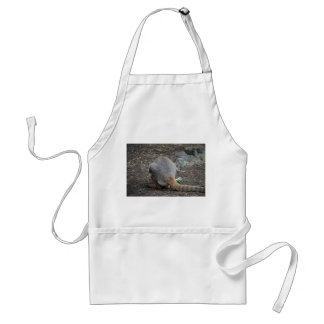 wallaby back view looking over animal adult apron