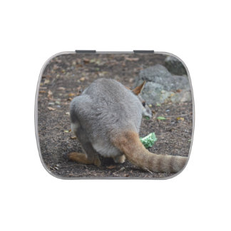 wallaby back view looking over animal candy tins