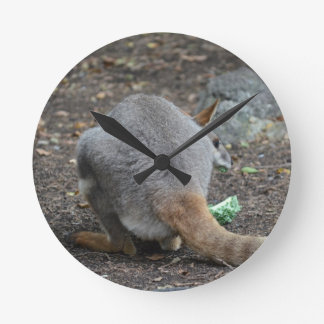 wallaby back view looking over animal round wall clocks