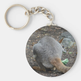 wallaby back view looking over animal key chains