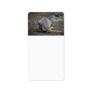 wallaby back view looking over animal custom address labels
