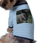 Wallaby Camiseta De Perrito