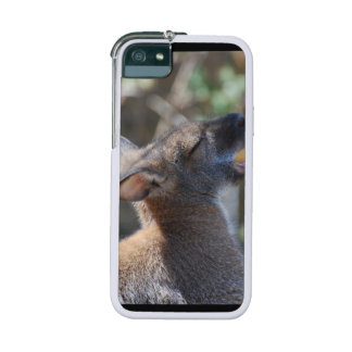 Wallaby iPhone 5 Cover