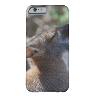 Wallaby iPhone 6 Case