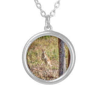WALLABY IN RURAL QUEENSLAND AUSTRALIA ROUND PENDANT NECKLACE