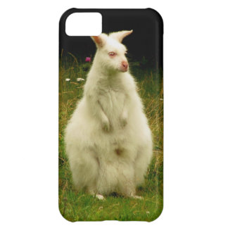 Wallaby iPhone 5 case