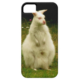 Wallaby iPhone 5 case iPhone 5 Case