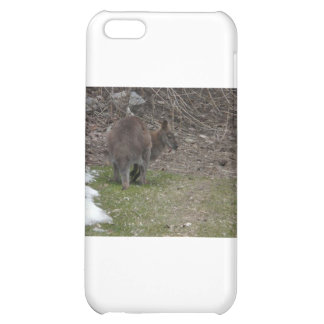 wallaby case for iPhone 5C