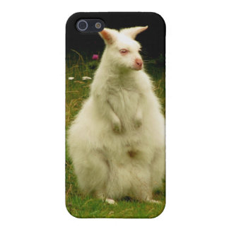 Wallaby iPhone iPhone 5 Covers
