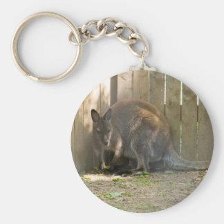 wallaby keychain