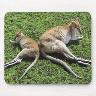 Wallaby Love Mousepad