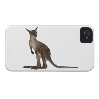 Wallaby - Macropus robustus (3 months old) iPhone 4 Case
