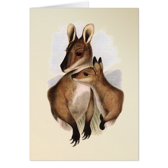 Wallaby Mother and Baby (painted) Card