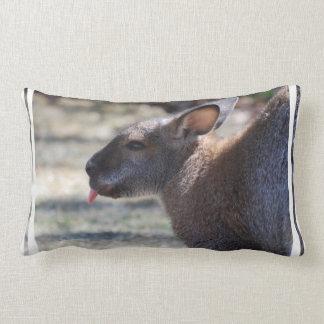 Wallaby que pega la lengua hacia fuera