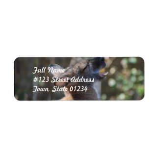 Wallaby Return Address Label