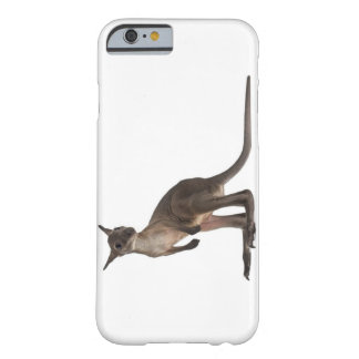 Wallaby - robustus del Macropus (3 meses) Funda De iPhone 6 Barely There
