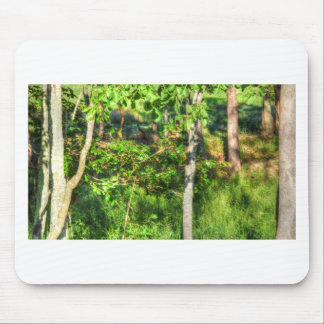WALLABY RURAL QUEENSLAND AUSTRALIA ART EFFECTS MOUSE PAD