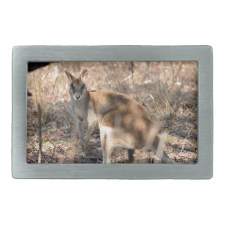 WALLABY RURAL QUEENSLAND AUSTRALIA BELT BUCKLE
