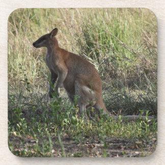 WALLABY RURAL QUEENSLAND AUSTRALIA BEVERAGE COASTER