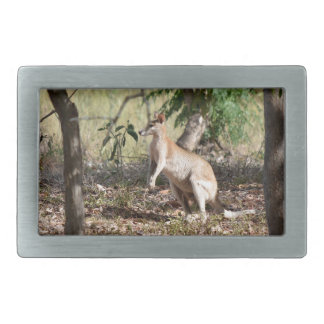 WALLABY RURAL QUEENSLAND AUSTRALIA RECTANGULAR BELT BUCKLE