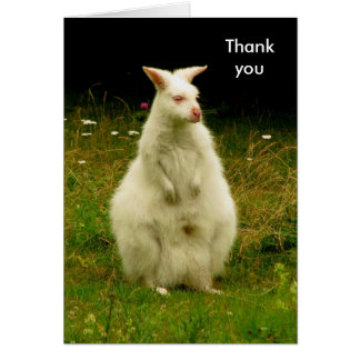 Wallaby thank you card
