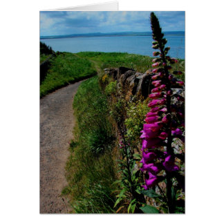 Walled Path in England Greeting Card