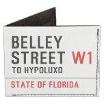 Belley Street  Wallet Tyvek® Billfold Wallet