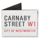 CARNABY STREET  Wallet Tyvek® Billfold Wallet