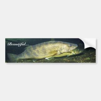 Walleye Bumper Sticker