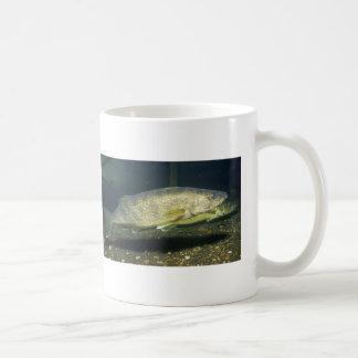 walleye coffee mug