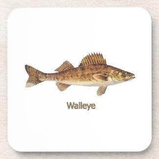 Walleye (Great Lakes) Coaster