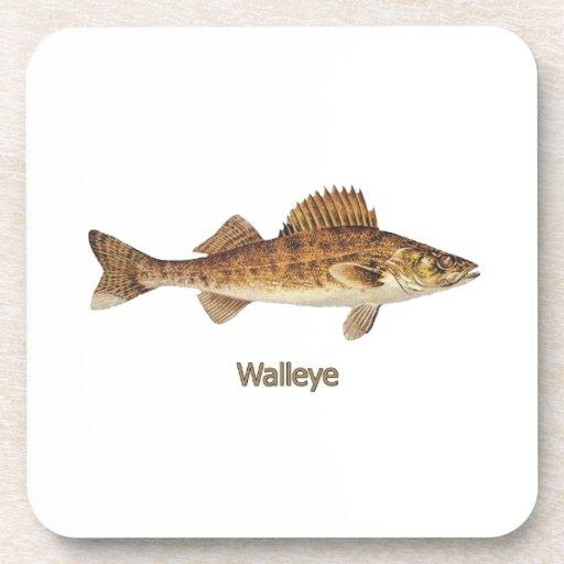 Walleye (Great Lakes) Drink Coasters