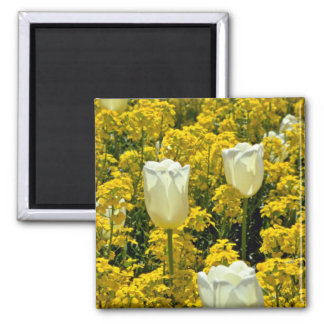 Wallflower and Tulips Pink flowers Magnet