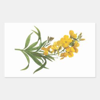 wallflower(Cheiranthus flavus) by Redouté Rectangular Stickers