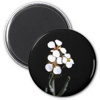 Wallflower Fridge Magnets
