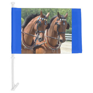 walnut hill carriage driving horse show car flag