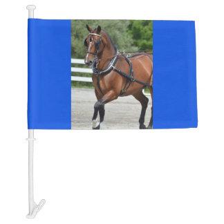walnut hill carriage driving horse show car flag