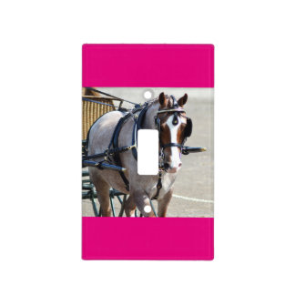 walnut hill carriage driving horse show light switch cover