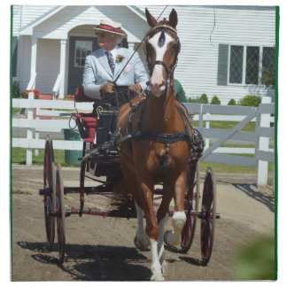 walnut hill carriage driving horse show napkin