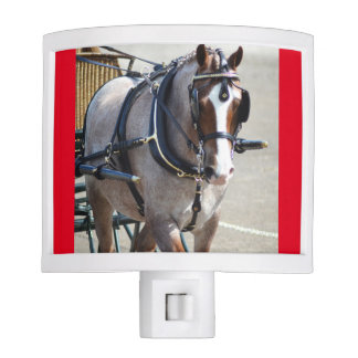 walnut hill carriage driving horse show night light