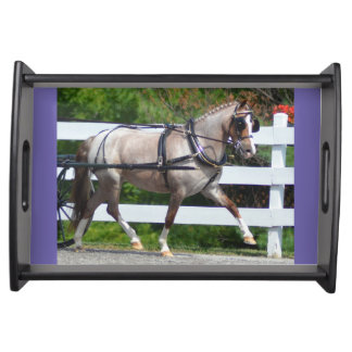 walnut hill carriage driving horse show serving tray