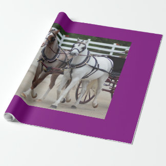 walnut hill carriage driving horse show wrapping paper